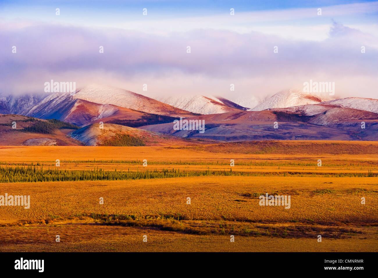 Polarkreis, Herbstfarben und Richardson Mountains entlang Dempster Highway, Yukon Stockbild