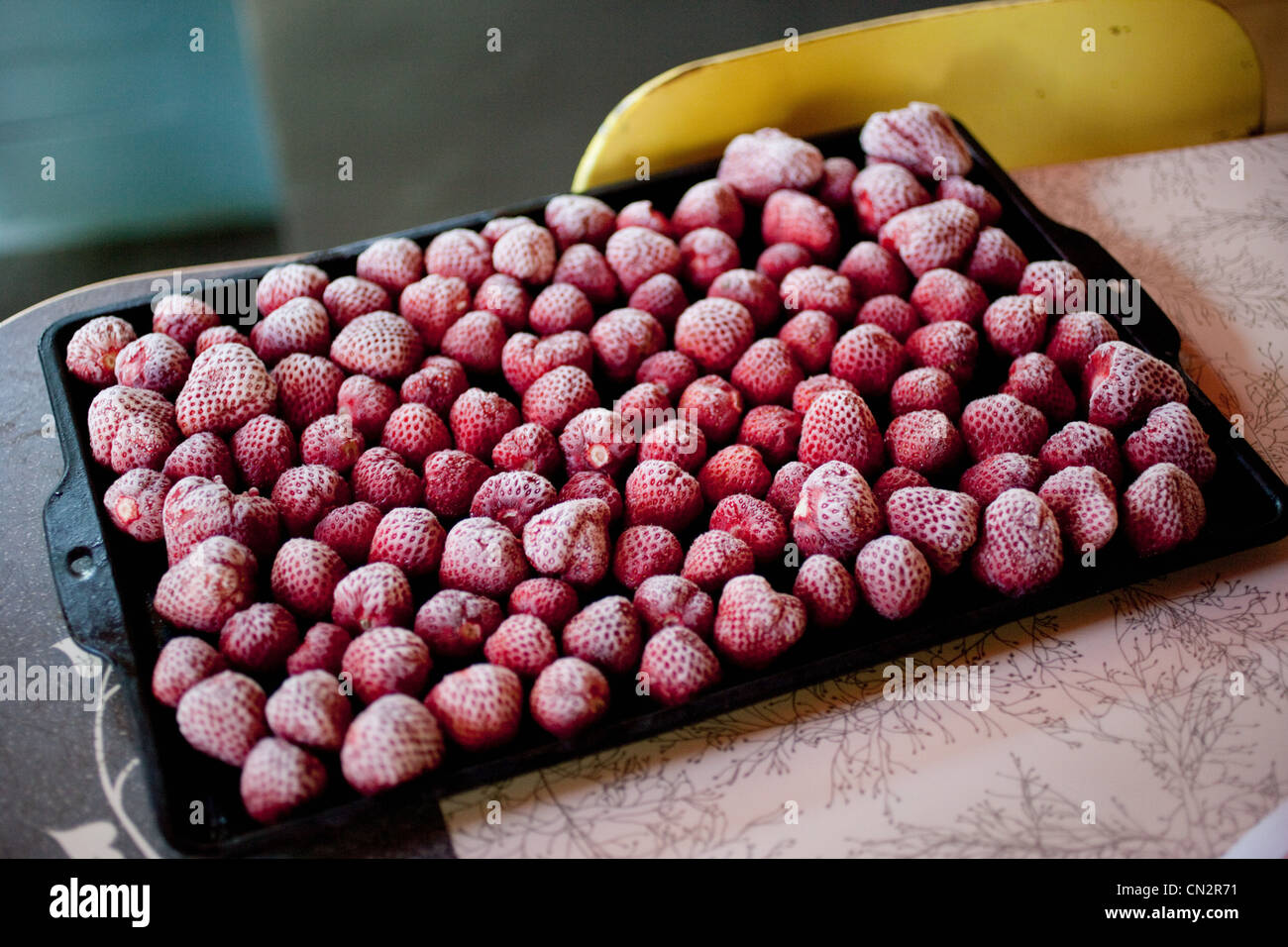 Gefrorene Erdbeeren auf Backform Stockbild