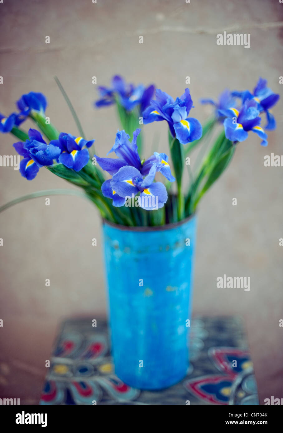 Iris Blumen in einer Vase. Stockbild