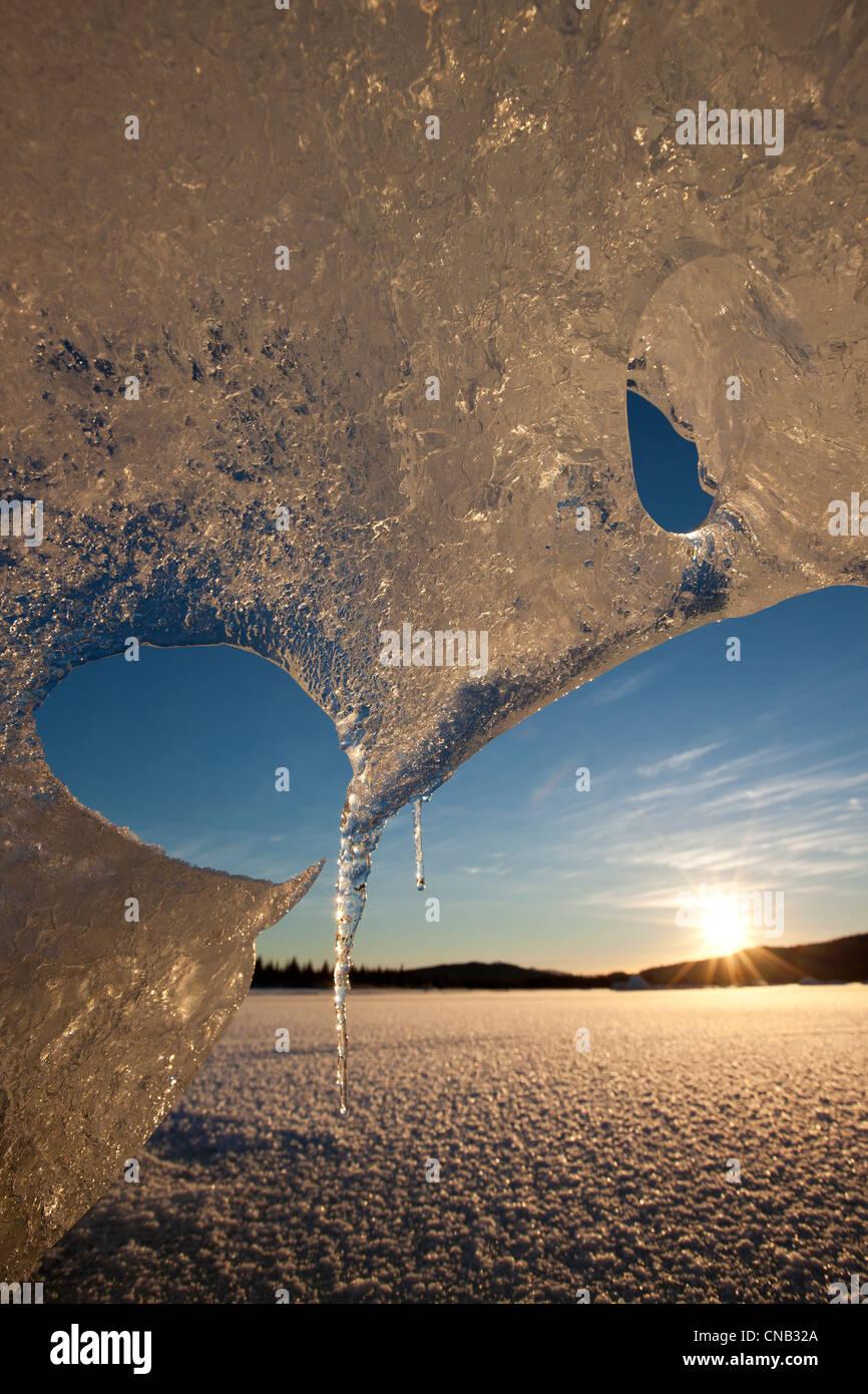 Nahaufnahme von Eisbergen Formationen in Mendenhall Lake mit Sonne spähen durch Tongass National Forest, Alaska, Stockbild