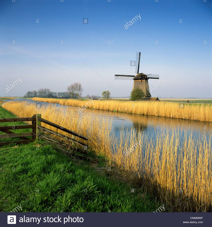 Windmühle und Weizenfeld ländlichen Fluss entlang Stockbild