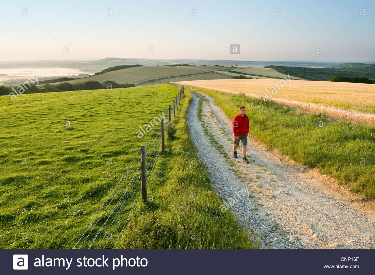 Walker auf der South Downs Way in der Nähe von Bignor Hill, West Sussex. Stockbild