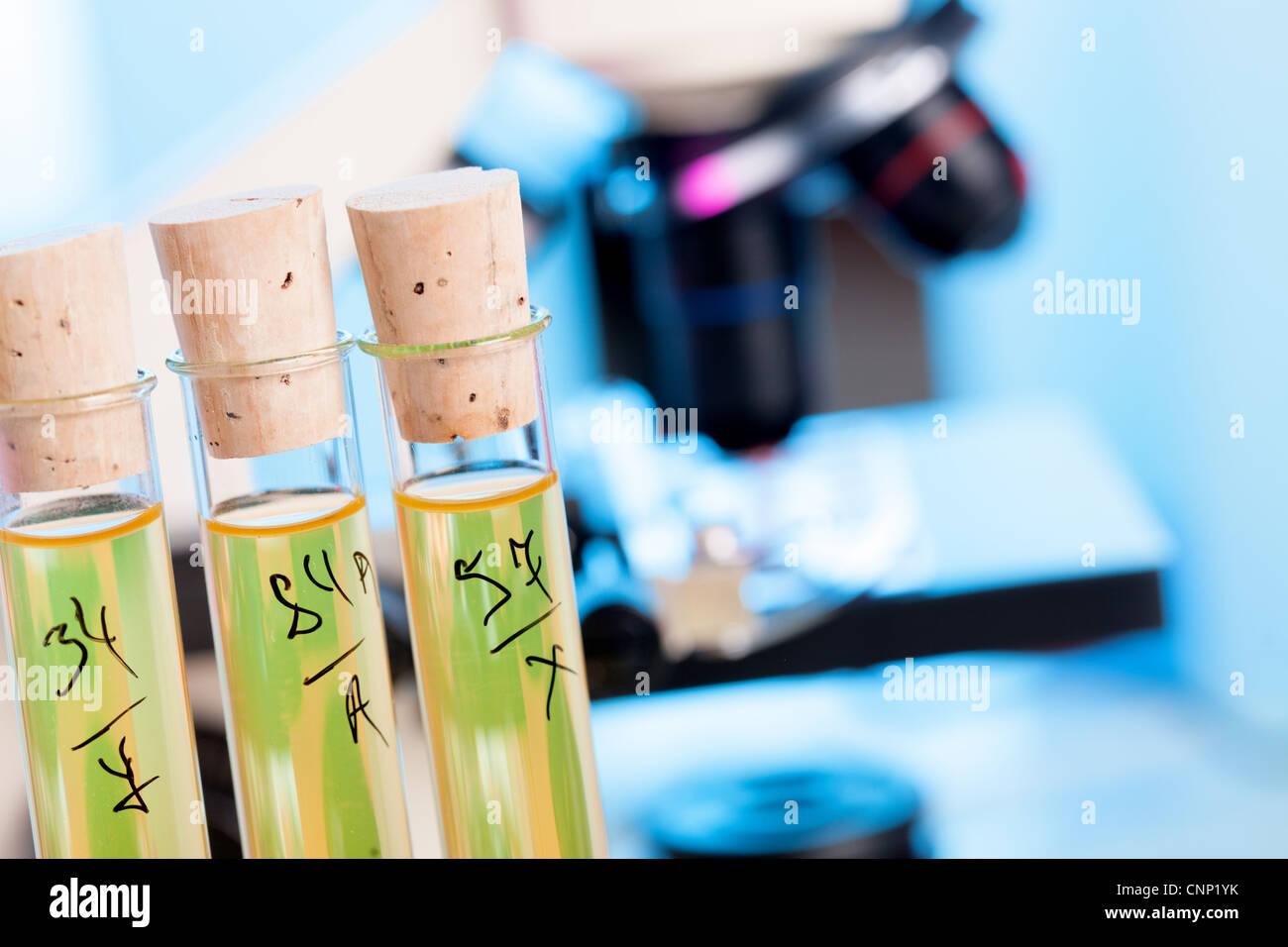 Kontrolle-Sicherheit von Lebensmittelzusatzstoffen im chemischen Labor Stockbild