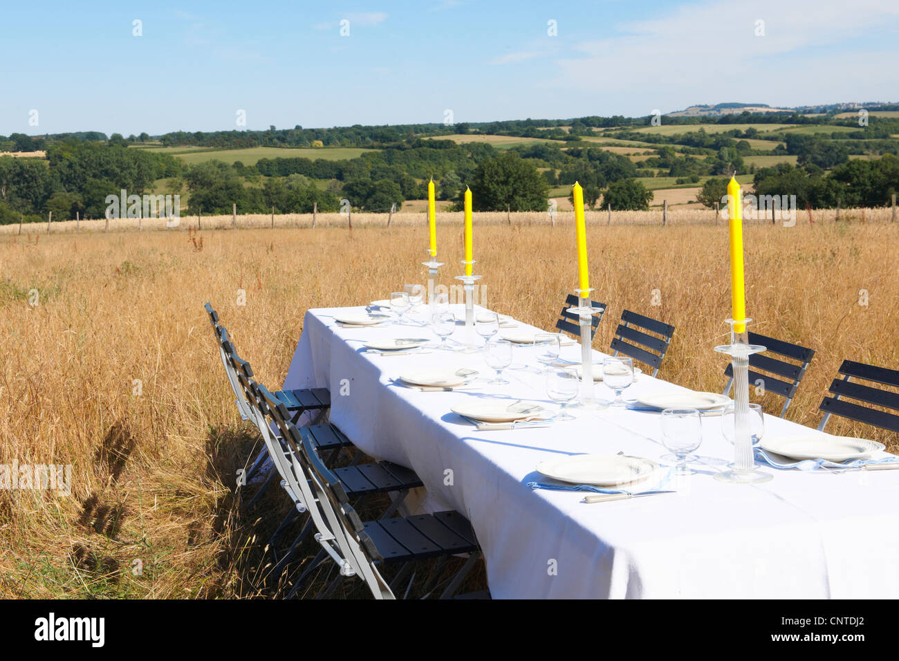 Tisch-Einstellungen im Weizenfeld Stockbild
