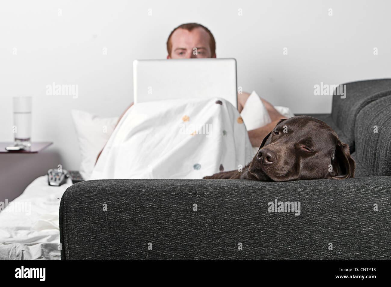 Mann auf Sofa mit Laptop und Hund Stockbild