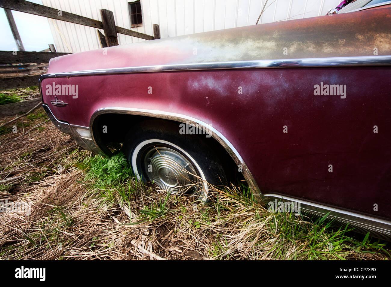 Die Fender und Rad eines alten klassischen Autos. Stockbild