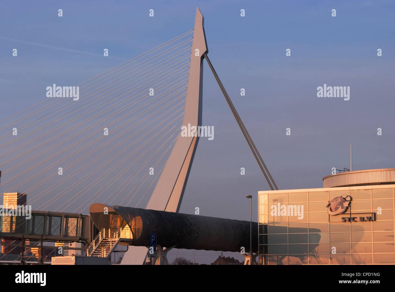 Der legendäre Erasmus-Brücke, eines der Wahrzeichen der Stadt, über den Fluss Maas, Rotterdam, Niederlande, Stockbild