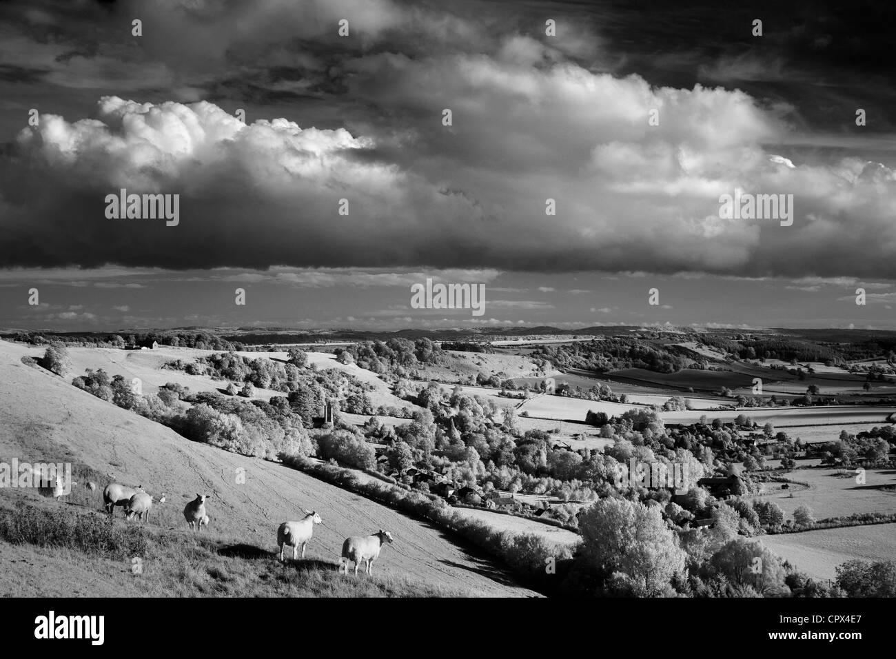 Corton Denham, Somerset, England, UK Stockbild