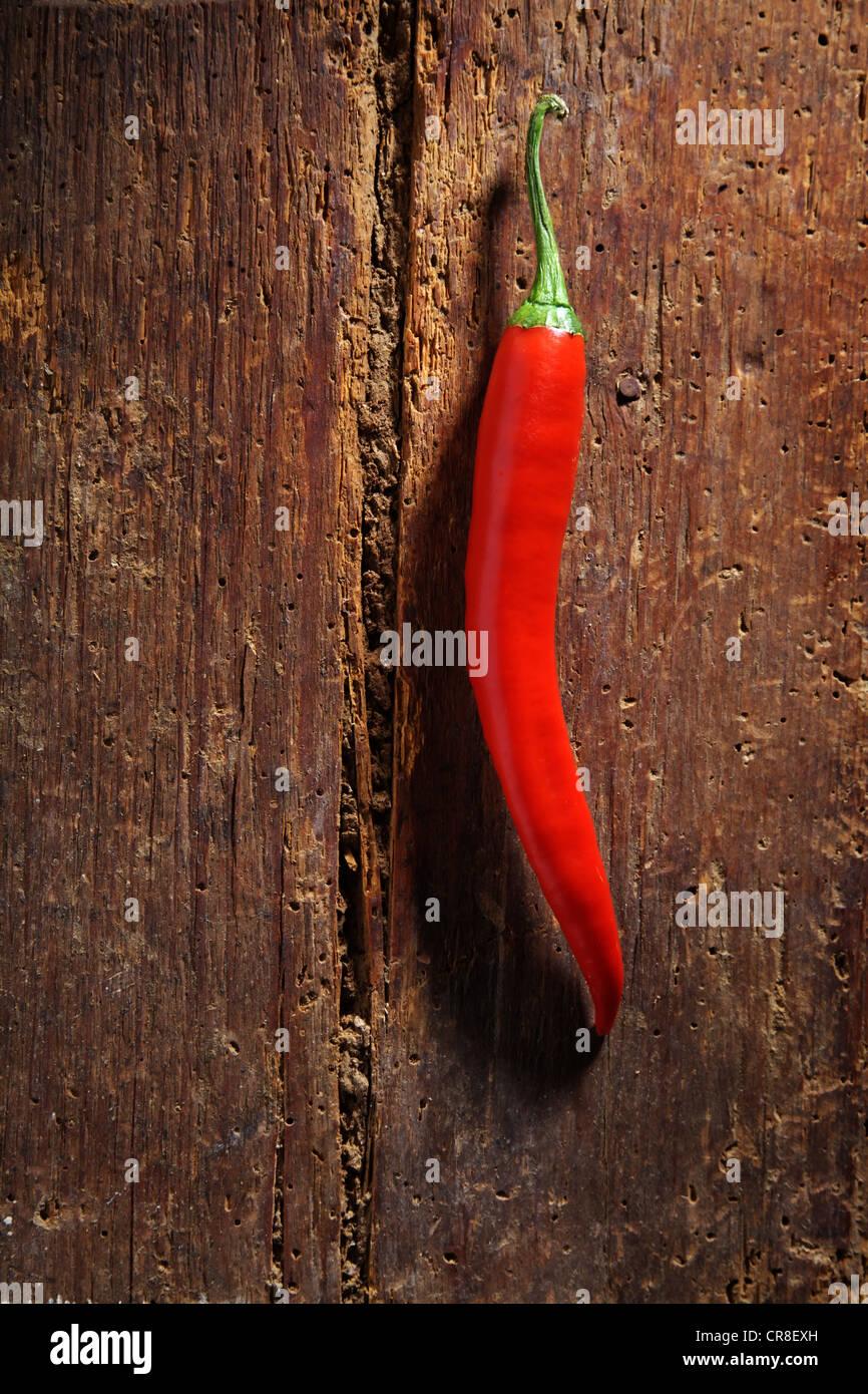 Chili-Pfeffer (Capsicum) auf einer rustikalen Holzoberfläche Stockbild