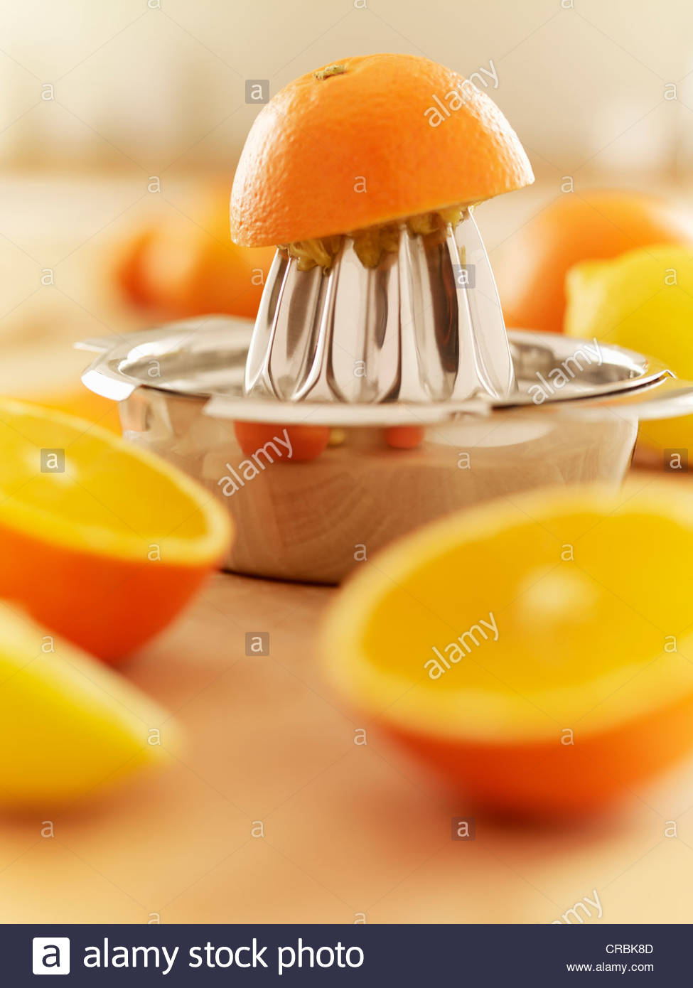 Orangen und Entsafter Stockbild