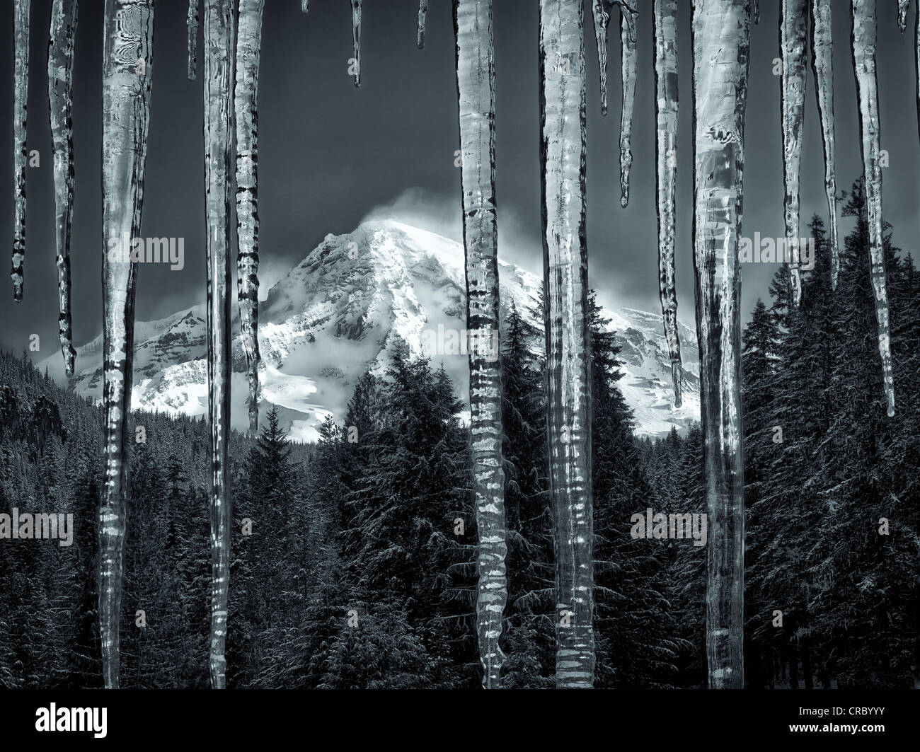 Eiszapfen und Mt. Rainier. Mt. Rainier Nationalpark, Washington Stockbild