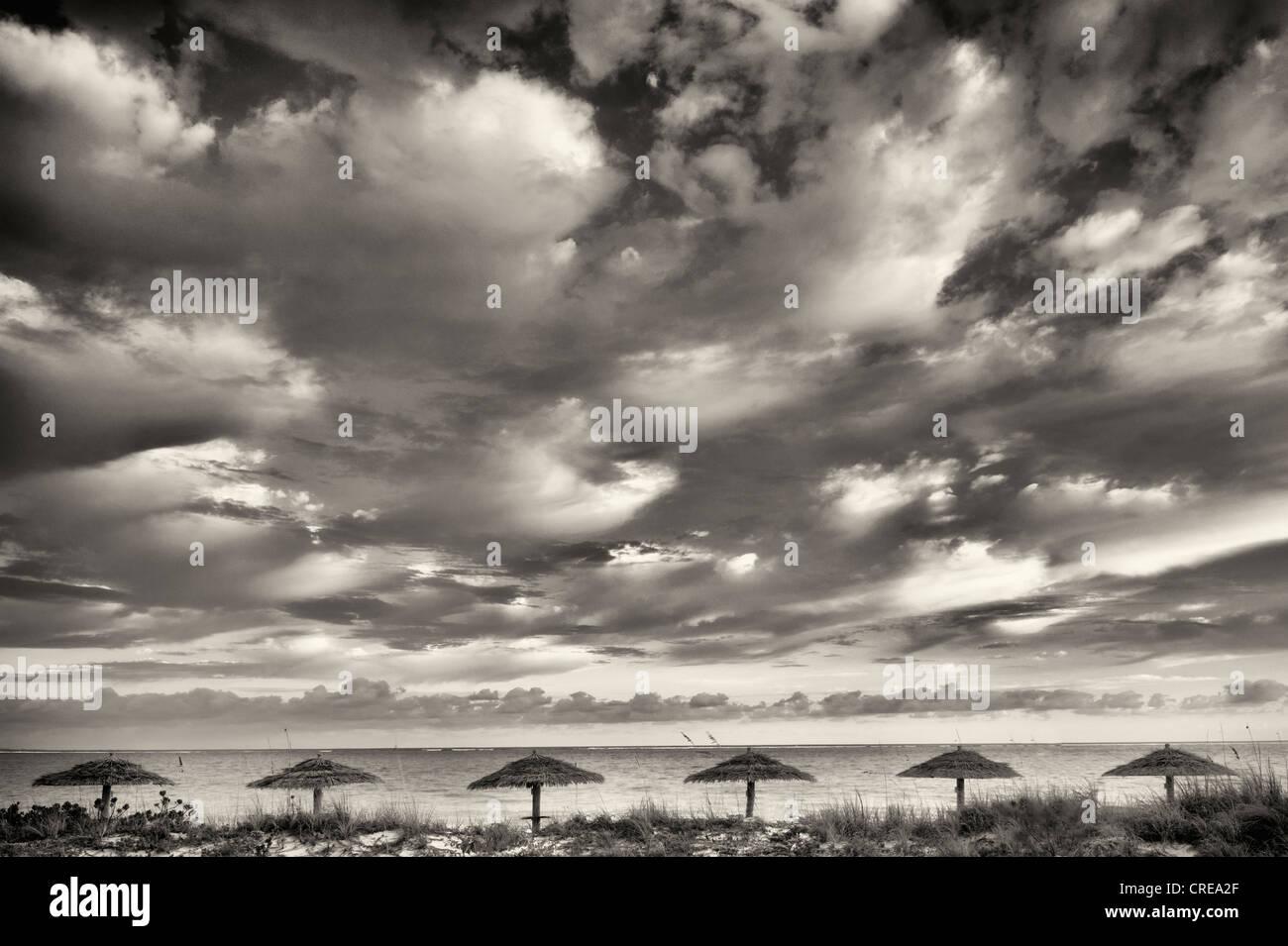 Reed Umbellas und Sonnenaufgang Wolken. Turks- und Caicosinseln. Providenciales Stockbild