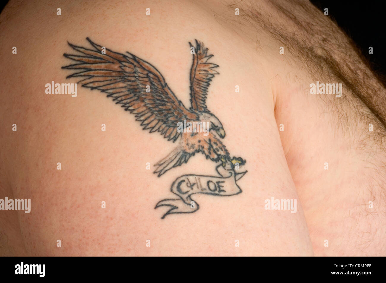 eagle tattoo stockfotos eagle tattoo bilder alamy. Black Bedroom Furniture Sets. Home Design Ideas