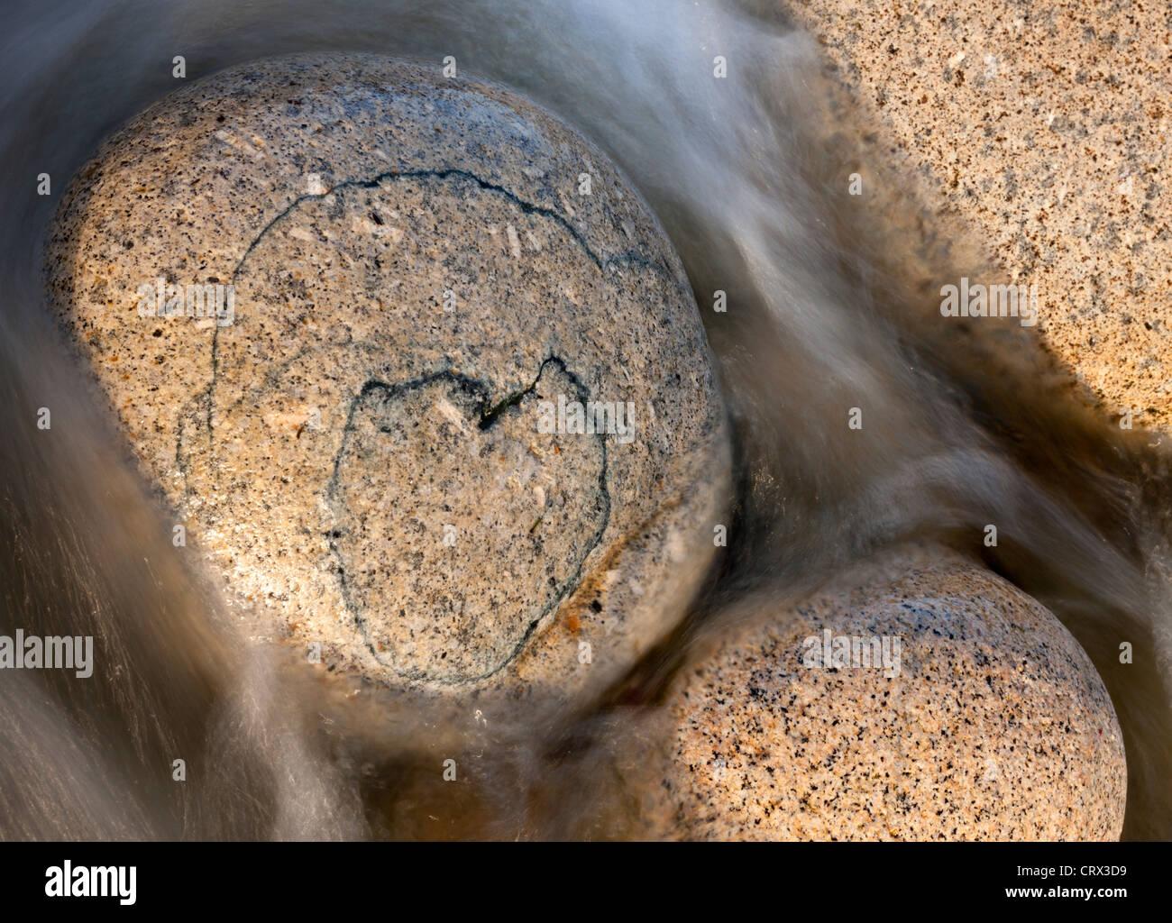 Herzförmige Muster auf eine kreisrunde Granitblock, Porth Nanven, Cornwall, England. Frühling (April) Stockbild