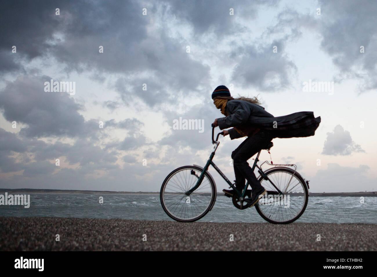 Die Niederlande, Kamperland, Frau Radfahren gegen den stürmischen Wind. Stockfoto
