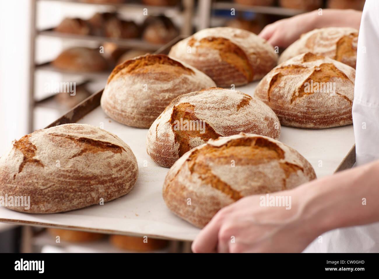 Koch mit Tablett Brot in Küche Stockbild