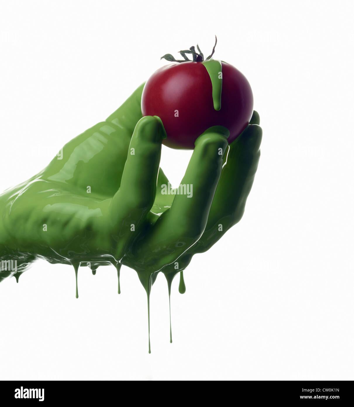 Grün lackiert Hand mit Tomaten Stockbild