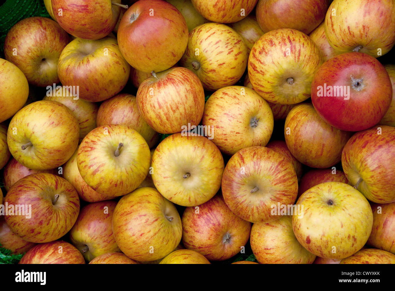 pile of apples stockfotos pile of apples bilder alamy. Black Bedroom Furniture Sets. Home Design Ideas