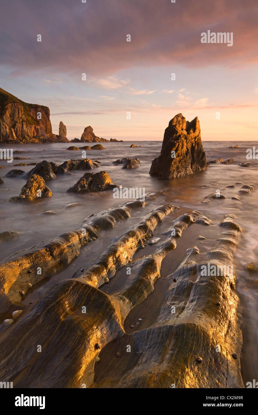 Goldener Abend Sonne taucht die Felsen und Vorsprünge an Größe im South Hams, Devon, England. Herbst Stockbild