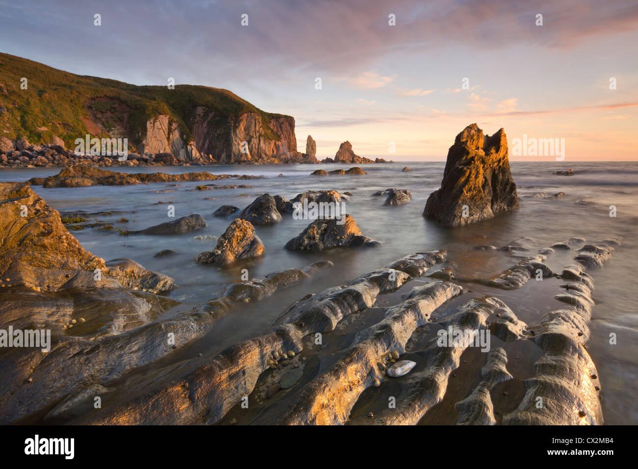 Goldener Abend Sonne taucht die Felsen und Vorsprünge an Größe im South Hams, South Devon, England. Stockbild