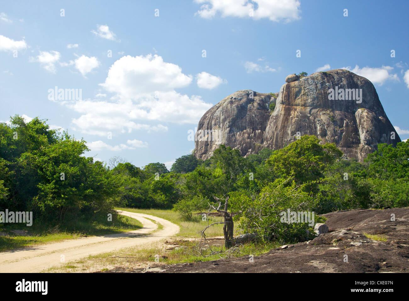 Elephant Rock aus Wald Track, Yala-Nationalpark, Sri Lanka, Asien Stockbild