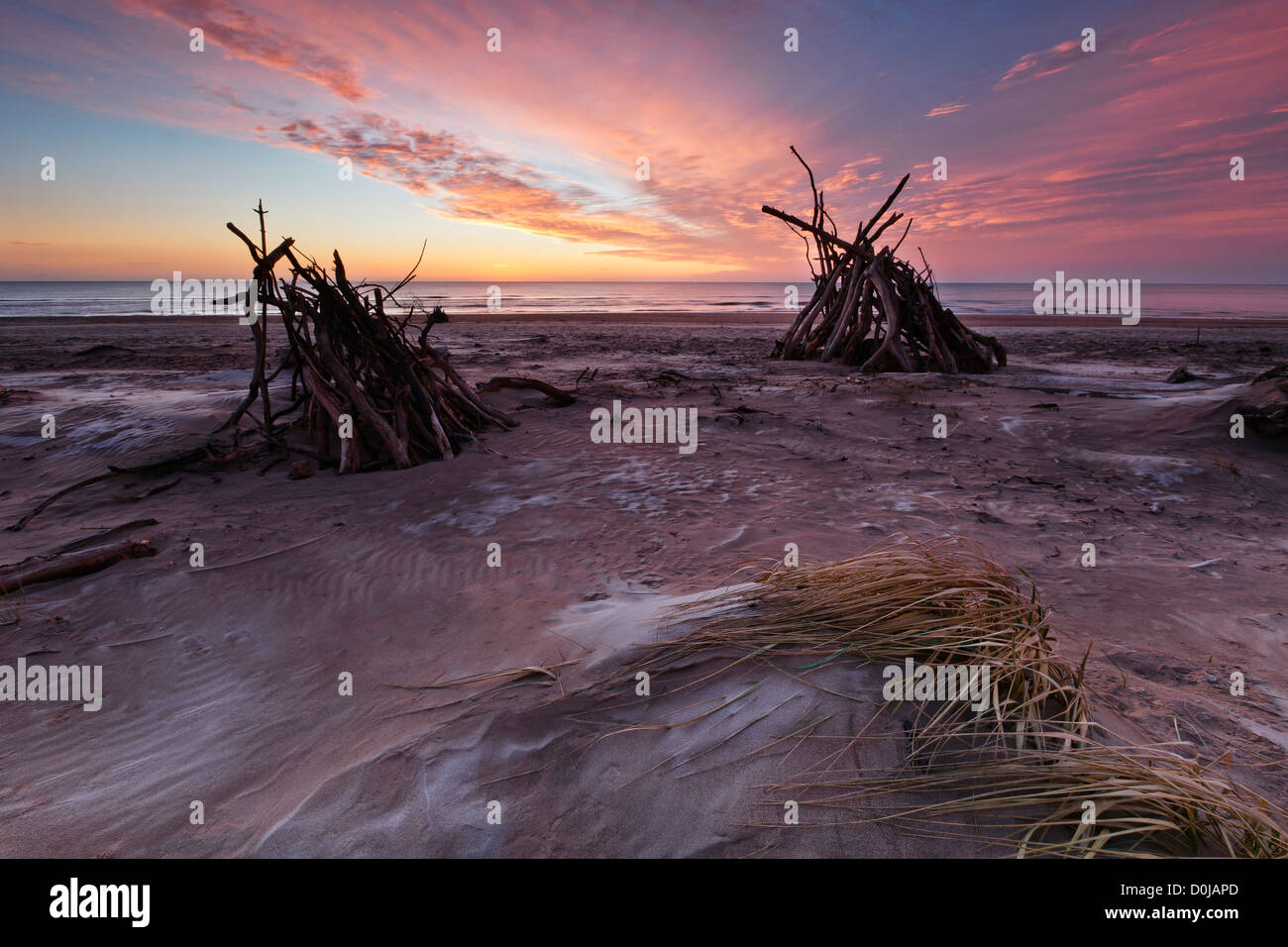 Treibholz blendet bei Sonnenaufgang am St Cyrus. Stockbild