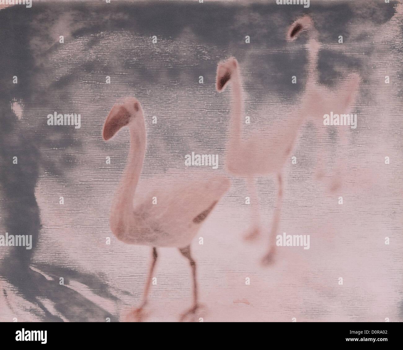drei Rosa Flamingos Hof Ornamente, Polaroid Transfer, © Mak Stockbild