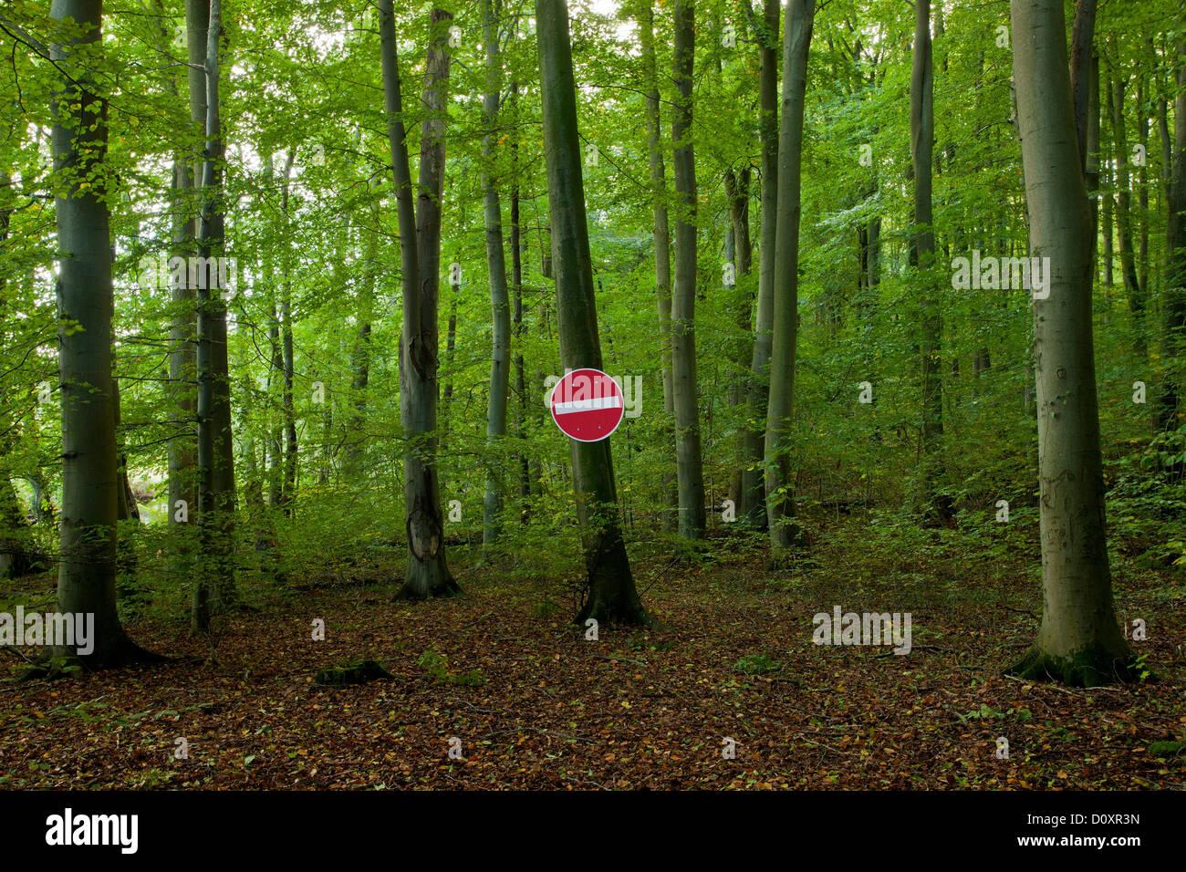 Kein Eintrag Zeichen in einem Wald Stockbild