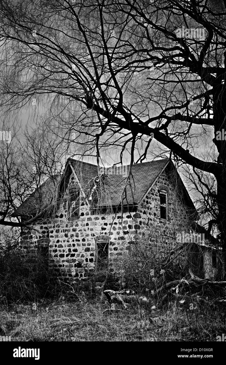 Ein kleines verlassenes Haus im Wald Stockbild