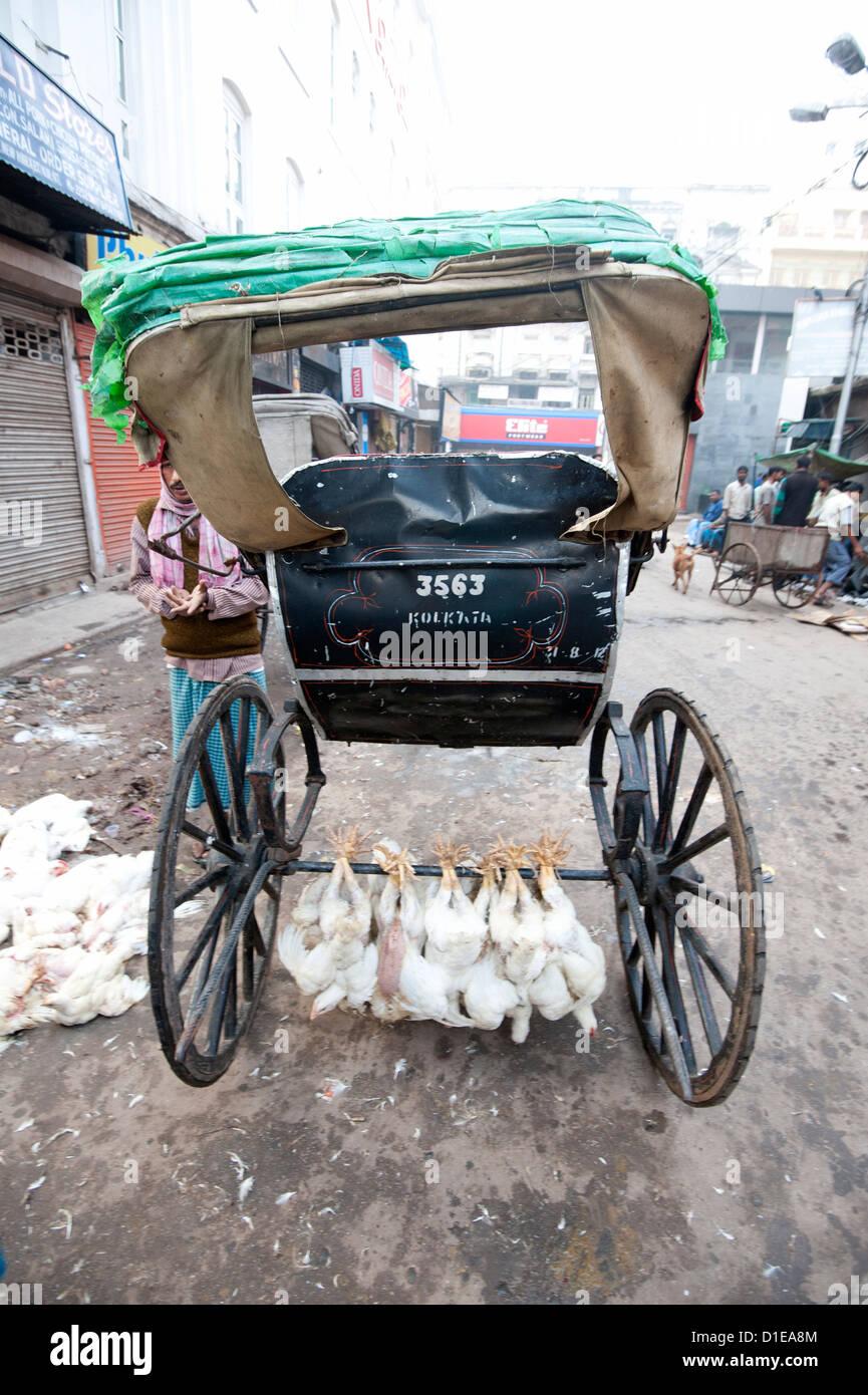 Hühner, hing an ihren Beinen an Achse unter laufen Rikscha in New Market, Kolkata, Westbengalen, Indien, Asien Stockbild