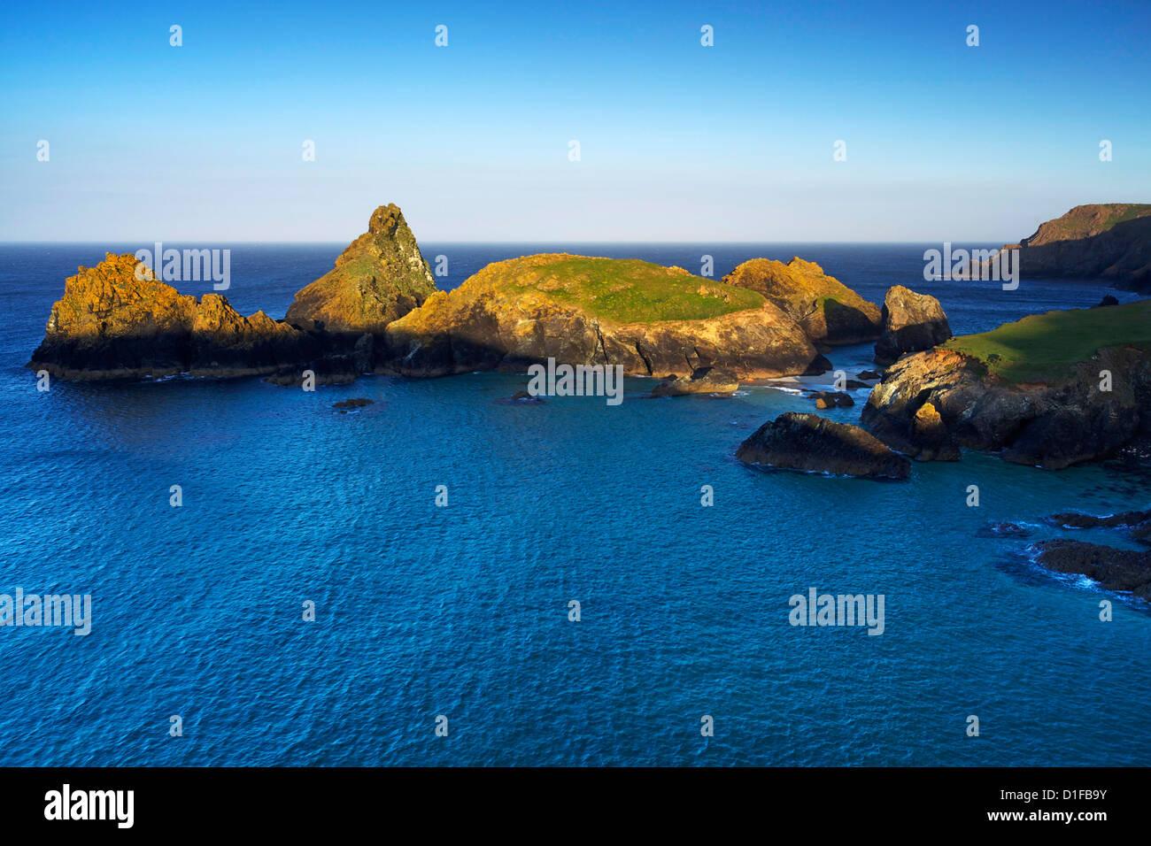 Kynance Cove, Lizard, Cornwall, England, Vereinigtes Königreich, Europa Stockbild