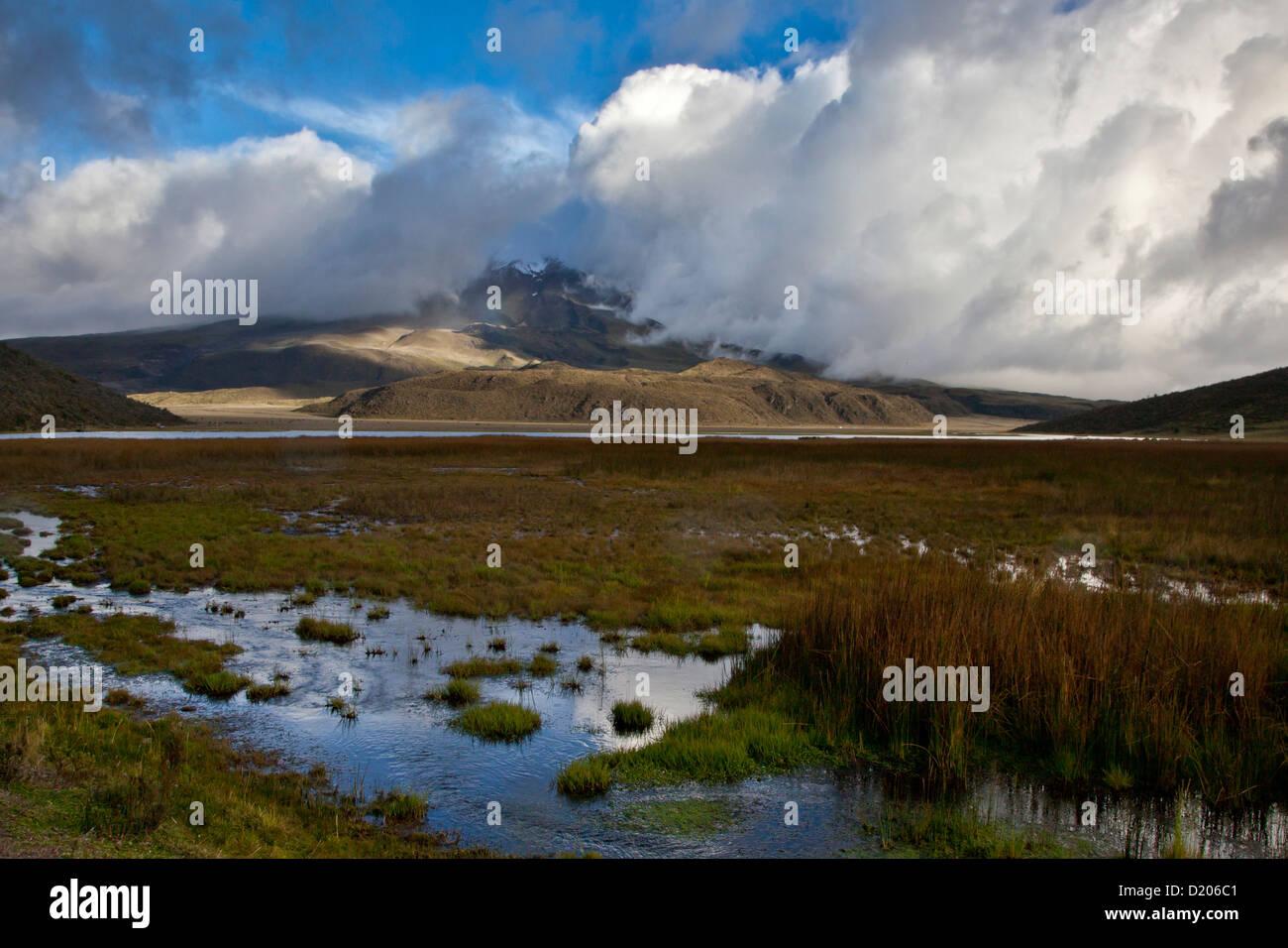 Nebel und Wolken am Cotopaxi (5897m), im Vordergrund: Lagune Limpiopungo, Anden, Ecuador, Südamerika Stockbild