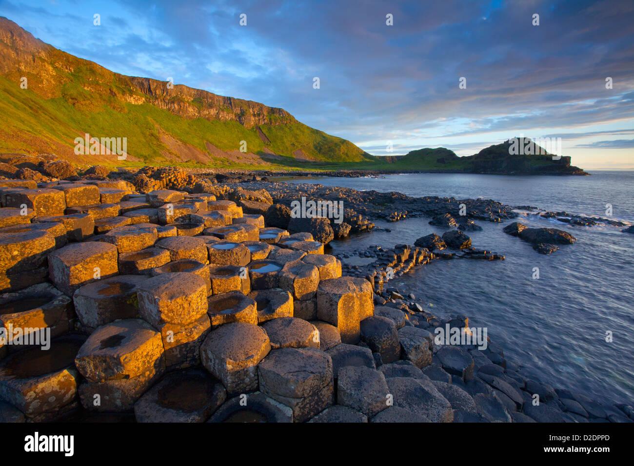Abendlicht auf dem Giant es Causeway, County Antrim, Nordirland. Stockbild