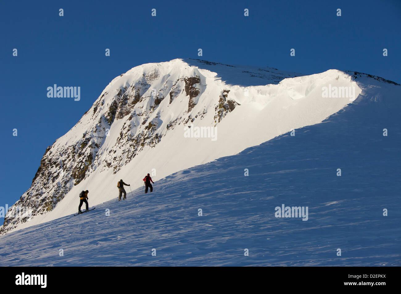 Drei Backcountry Skifahrer Wandern auf einen Berg in rosa Sonnenaufgang Licht. Stockbild