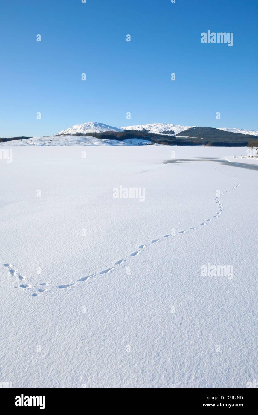 Clatteringshaw Loch, eingefroren und in Winterschnee bedeckt, Dumfries & Galloway, Schottland Stockbild