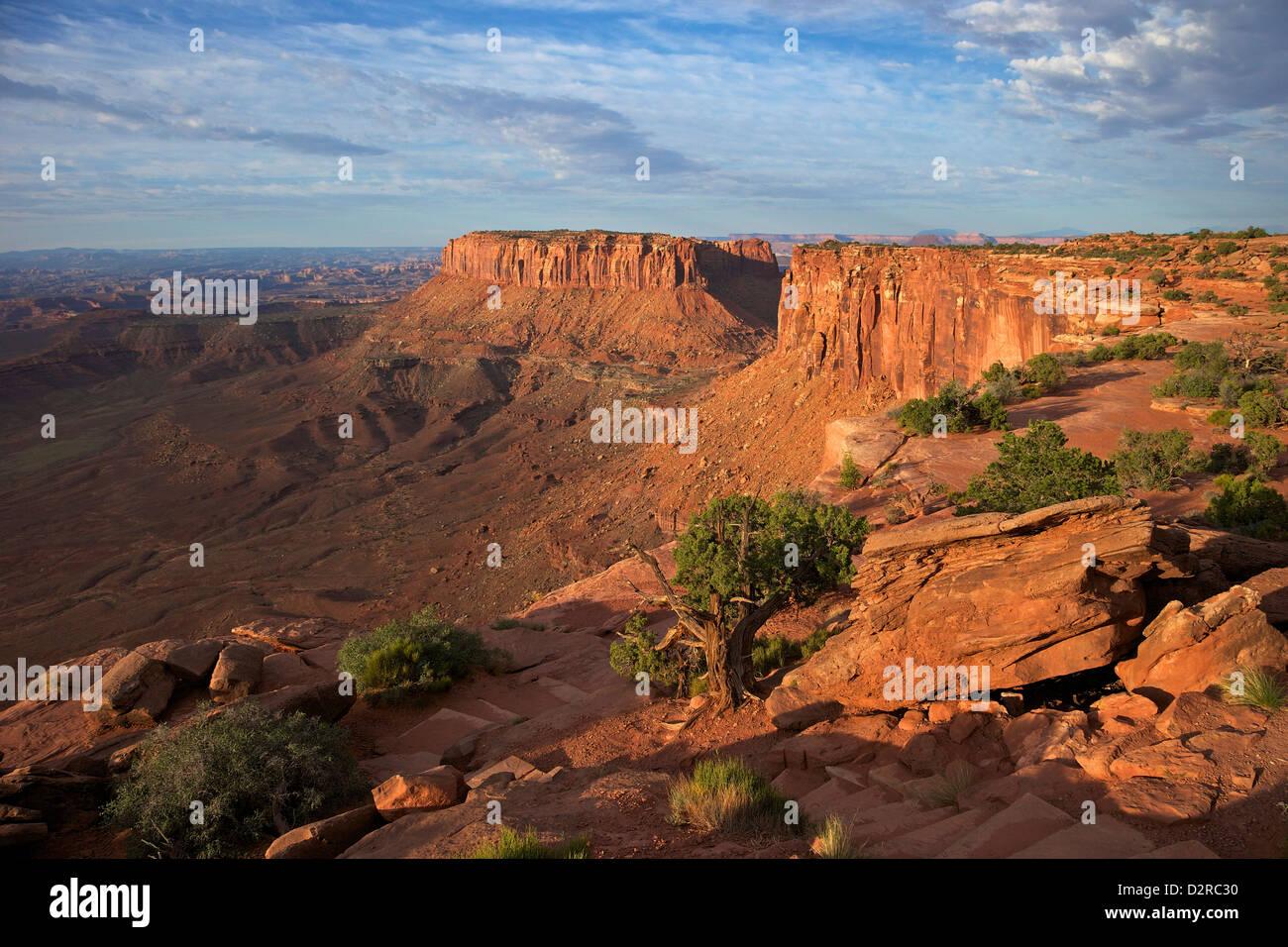 Grand View Point Overlook, Canyonlands National Park, Utah, Vereinigte Staaten von Amerika, Nordamerika Stockbild