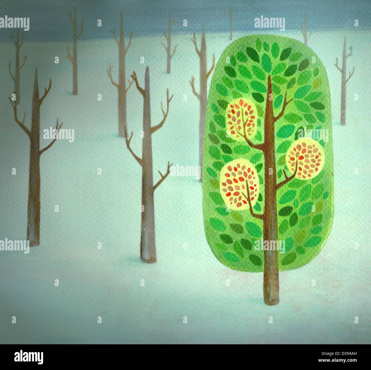Ein blühender Baum stehend aus kahlen Bäumen hinzufügen Stockbild
