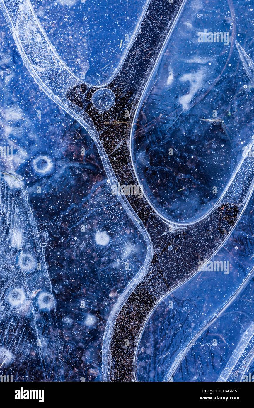 Eis-Muster im gefrorenen Teich, Dartmoor, Devon, England. Winter (Dezember) 2012. Stockbild