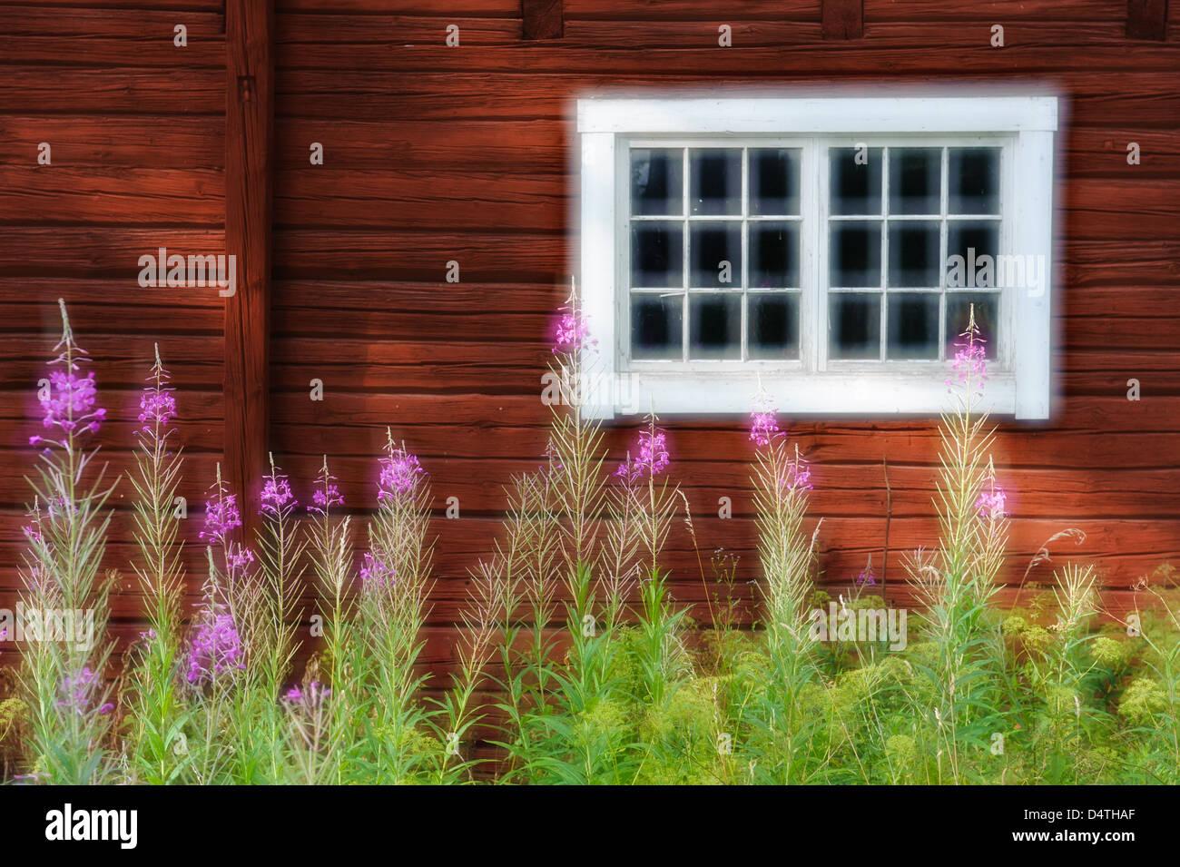 Bauernhaus-Fenster in Östergötland, Schweden, Europa Stockbild