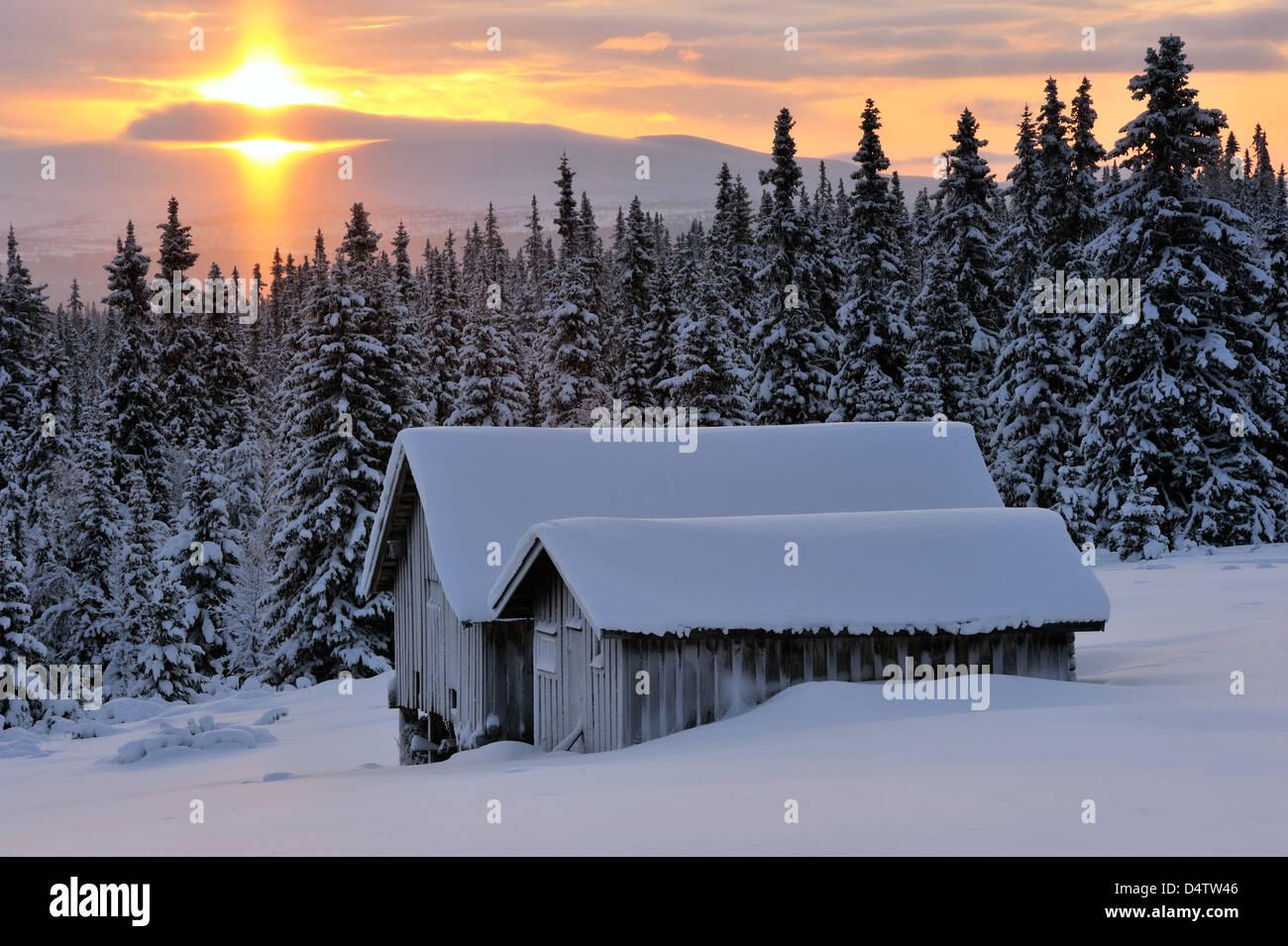 Schnee bedeckte Gebäude bei Sonnenaufgang in Lofsdalen, Härjedalen, Schweden, Europa Stockbild