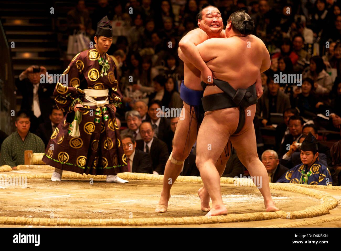 Zwei Sumo-Ringer, die hart daran setzen Sie ihre Gegner aus dem Kreis, Sumo-ringen Wettbewerb, Tokio, Japan, Asien Stockbild