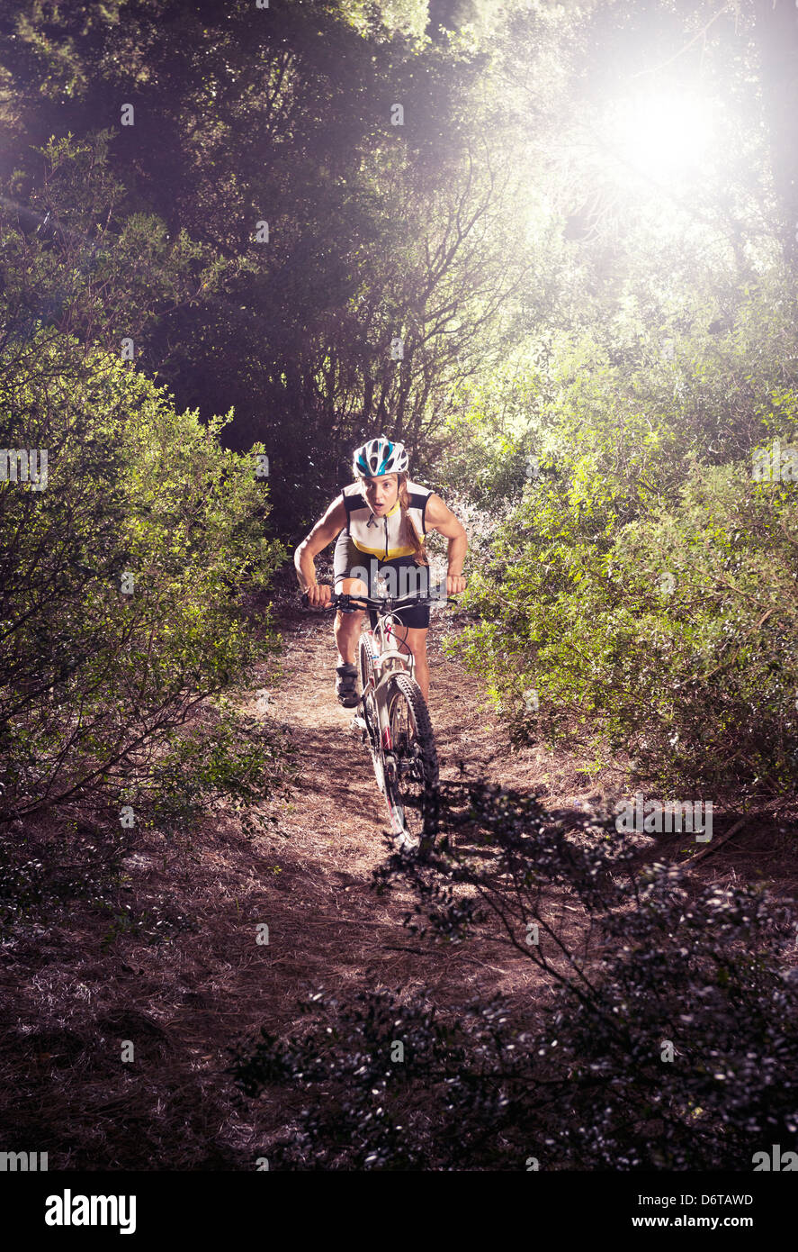 Weibliche Mountainbiker. Stockbild