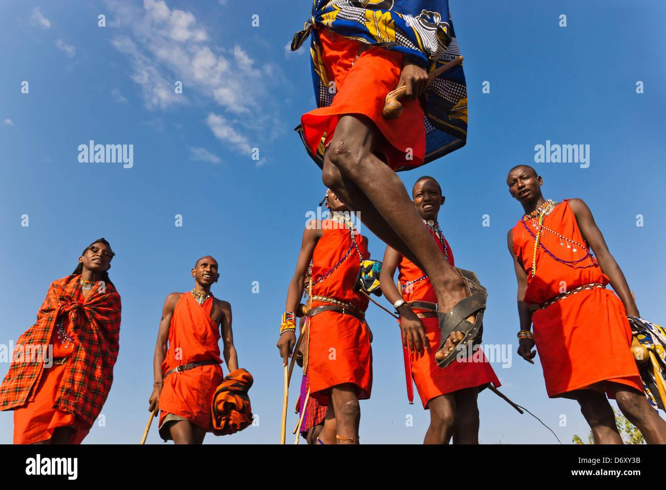Masai Stammesmitglieder Durchführung springen tanzen, Masai Mara, Kenia Stockfoto