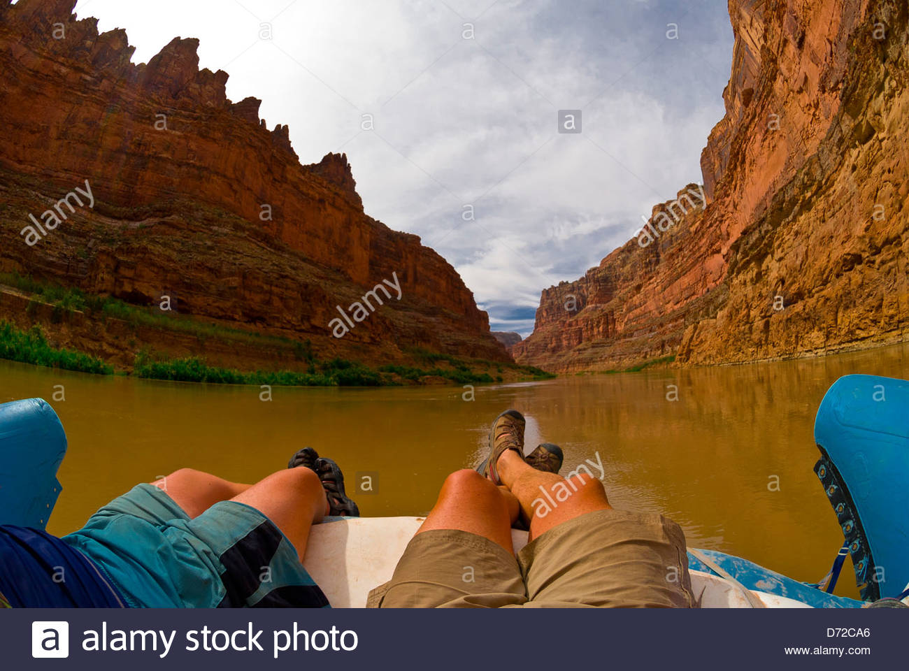 Bucht-Canyon, Colorado River, Glen Canyon National Recreation Area, Utah, USA Stockbild