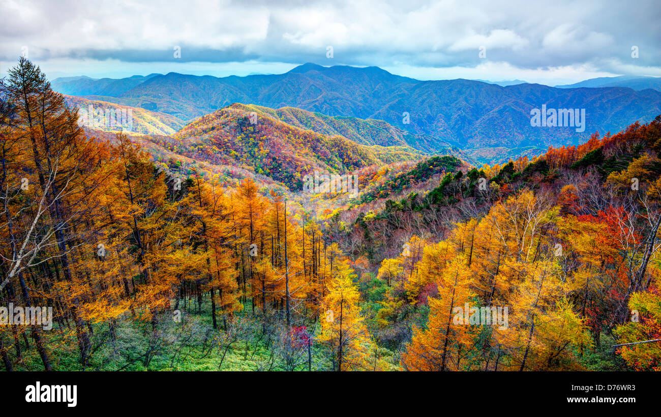 Gebirge in Nikko National Park in Nikko, tochigi, Japan. Stockbild