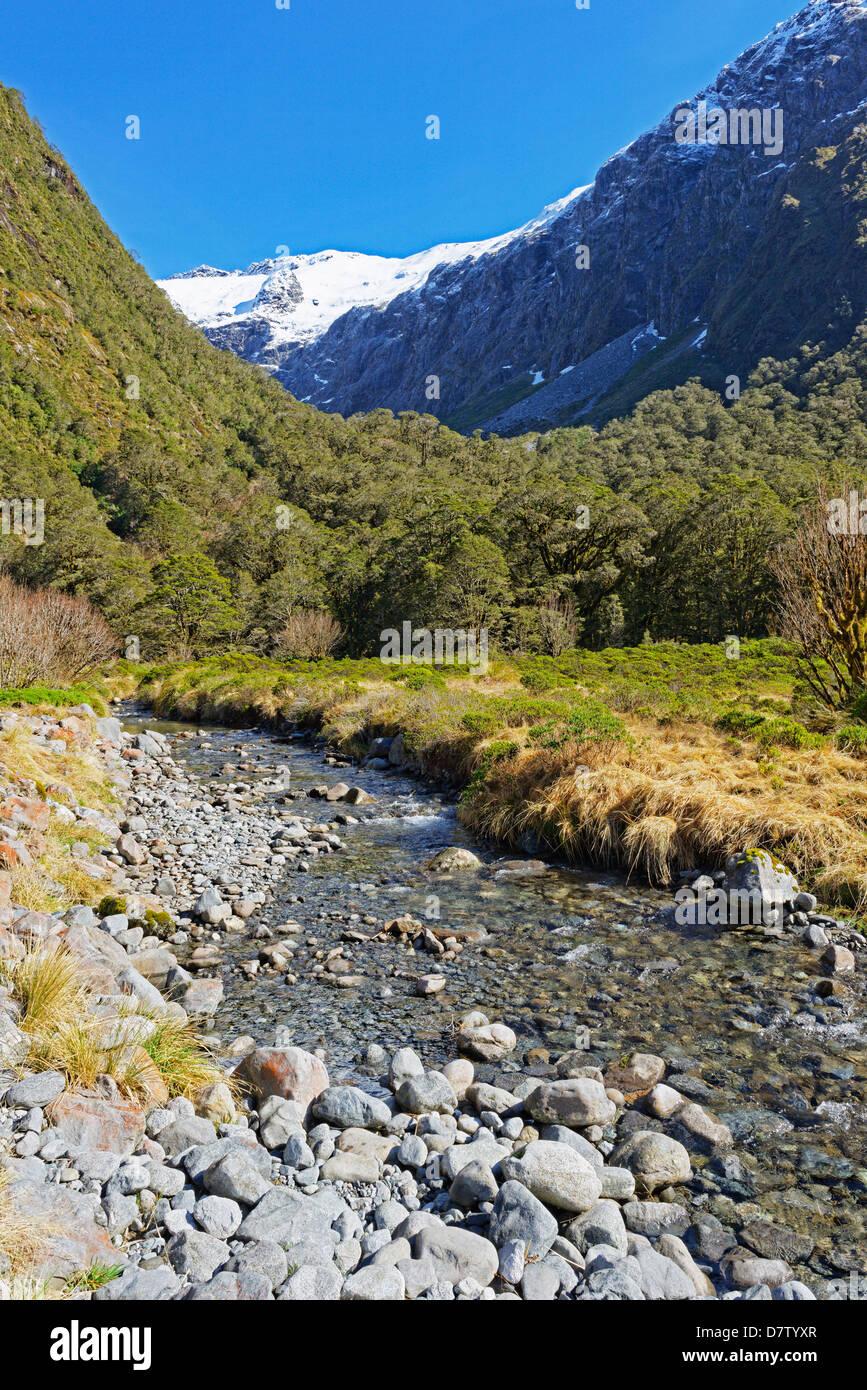 Fluss, der Milford Track, Fjordland National Park, UNESCO-Weltkulturerbe, Südinsel, Neuseeland Stockbild