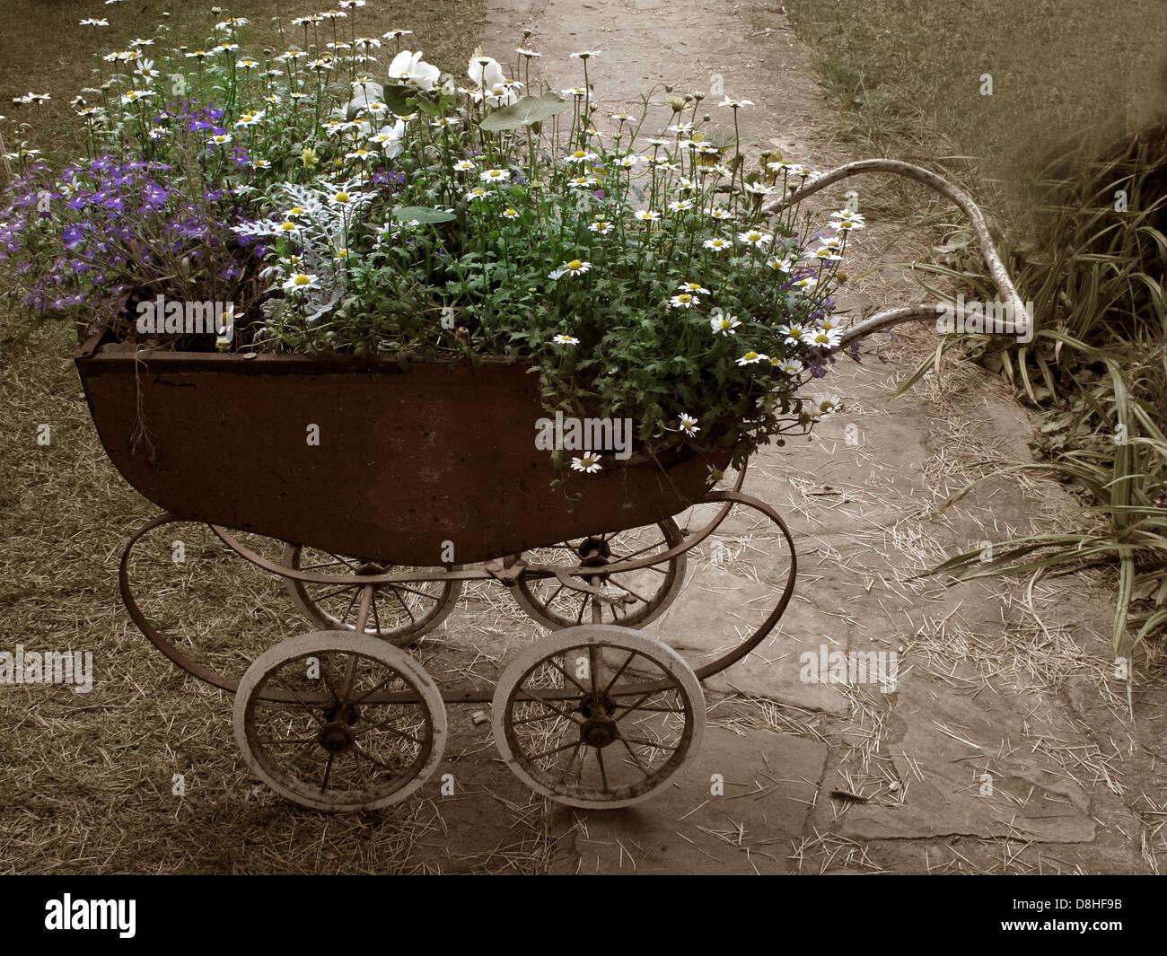 Laden Sie dieses Alamy Stockfoto Einem alten Kinderwagen bepflanzt mit Blumen, Lymm Festival 2011, Warrington, Cheshire, England, UK - D8HF9B