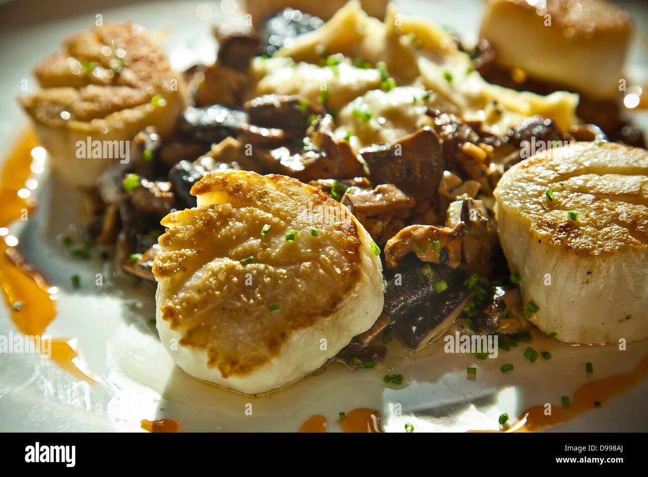 gebratene Jakobsmuscheln auf einem Teller mit Kartoffelpüree Stockbild