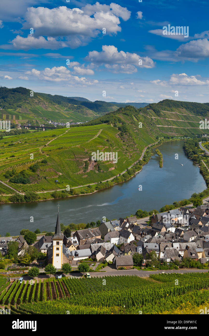 Der berühmte Bogen in der Nähe von Bremm an der Mosel, Rheinland-Pfalz, Deutschland Stockbild