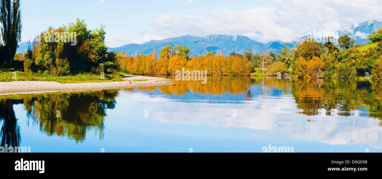 Reflexion der Herbst Bäume auf Takaka River, Golden Bay, Tasman Region, Südinsel, Neuseeland Stockbild